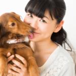 うさパラの評判と口コミ – 犬猫の薬が高いとお悩みの方へ!