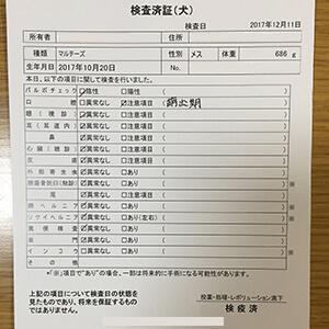 購入時に手渡される「検査証明書」には様々な検査の情報が掲載されています。