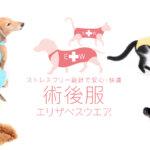 エリザベスウェア 犬猫の店舗、販売店は?作り方と手作りで格安に出来る?