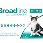 ブロードライン 猫用の最安値価格と通販 – 副作用から使い方を解説!