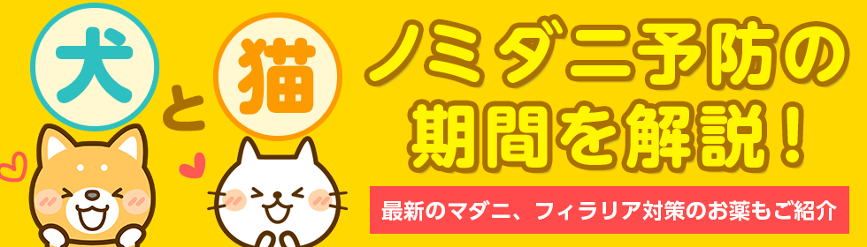 犬猫のノミダニ予防の時期・期間を解説!