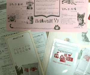 お試し500円で小型犬なら1ヶ月も試せます!